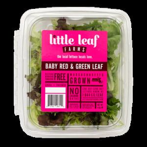 Little Leaf Lettuce