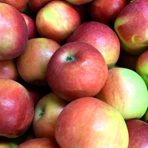 Breezeland Orhards Ida Red Apples